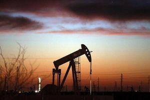 Giá dầu sụt giảm mạnh