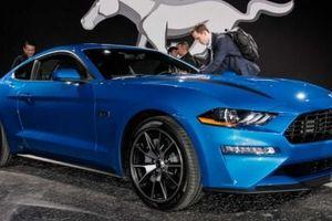 Ford Mustang SVO EcoBoost mạnh mẽ hơn vẫn sẽ được tung ra ?