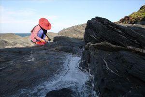 Hạt muối tinh ở ngọn núi hơn 400 năm tuổi