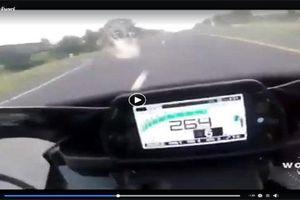 Chơi trò chơi tốc độ lên tới 264 km/h, nam biker tử vong tại chỗ