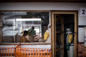 Báo động số người tử vong do dịch Ebola tại CHDC Congo