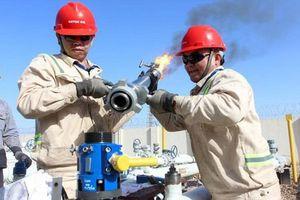 Giá dầu sụt mạnh trong tuần