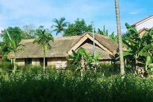 Tháng 5, về thăm làng sen quê Bác ngan ngát hương thơm