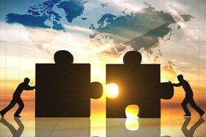 Nhóm Gelex mạnh tay chi gần 1.500 tỷ đồng nâng sở hữu tại Viglacera lên 25%
