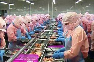 Hiệp định CPTPP tạo thêm cơ hội xuất khẩu sang thị trường Nhật Bản