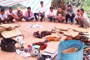 Cảnh sát triệt phá trường gà của Phương 'trái cây'