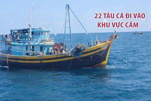 22 tàu cá vi phạm hành lang an toàn đường ống dẫn khí dưới biển