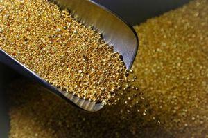 Thị trường vàng trong nước diễn biến khá tích cực ngay phiên đầu tuần