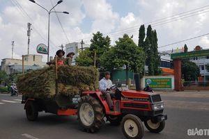 Xe công nông, máy kéo độ chế nhan nhản ở Tây Nguyên: 'Nông cụ' khó thay thế