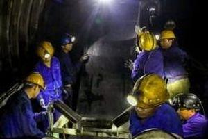 TKV chuyển đổi từ 'cơ khí sửa chữa' sang 'cơ khí chế tạo'