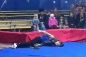 Đang biểu diễn huấn luyện viên xiếc bị trăn siết cổ chết