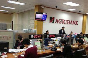 Các quy định về tổ trưởng tổ vay vốn của Agribank