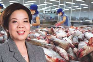 Vĩnh Hoàn của 'nữ tướng' Trương Thị Lệ Khanh sắp chi 185 tỷ đồng trả cổ tức