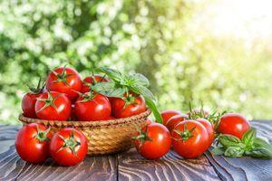 6 công dụng làm đẹp da với cà chua có thể bạn chưa biết