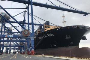 HICT Hải Phòng: Liên tục đón tàu 'khủng'