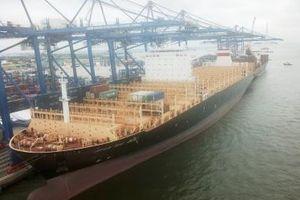 Cảng container Quốc tế Hải Phòng (HICT) đón chuyến tàu trên tuyến xuyên Thái Bình Dương