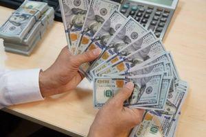 Chuyên gia nhận định diễn biến tỷ giá không đáng lo