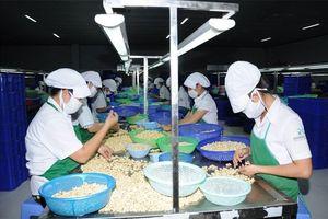 Xuất khẩu hàng Việt Nam sang Đông Âu còn khiêm tốn, chỉ 6,5 tỉ USD