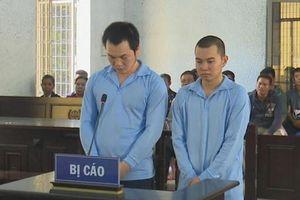 Lừa bán sang Trung Quốc nhiều thiếu nữ, lãnh án tù