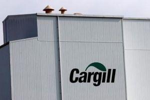 Tập đoàn Cargill thu hồi gần 150 tấn thức ăn chăn nuôi có chứa aflatoxin
