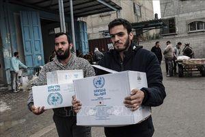 Liên hợp quốc: Ngân sách viện trợ lương thực cho Palestine thiếu hụt nghiêm trọng