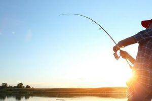 Khốn khổ vì chồng mê câu cá, bỏ bê vợ con