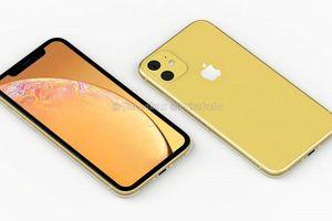Hình dung về iPhone XR 2019 dùng camera kép