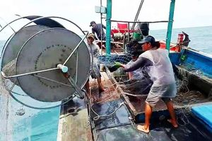 Ngư dân Nghệ An gặp khó vì 'tàu 67'