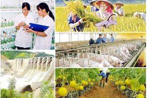 Công bố 10 sự kiện nổi bật chương trình mục tiêu quốc gia