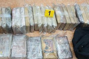 Bắt gần 120 kg cocain giấu trong container bột cá nhập khẩu về Tiền Giang