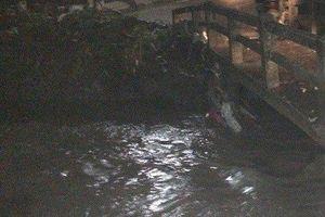Mưa lớn khiến 3 người bị cuốn trôi xuống suối, 2 người mất tích ở Đồng Nai