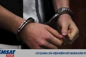 Phê chuẩn khởi tố, bắt tạm giam 03 bị can tại Ban quản lý rừng phòng hộ huyện Yên Thành, Nghệ An