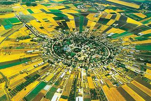 Các hình thái nông nghiệp trong đô thị