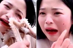 Đổ máu khi cố livestream ăn bạch tuộc sống