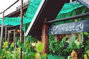 Homestay – Kênh đầu tư mới