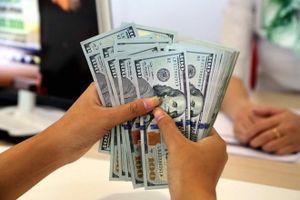 Thay đổi giá USD 40 lần trong ngày