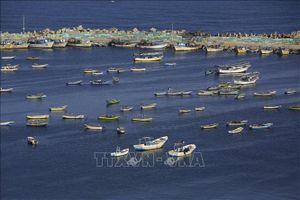 Israel gỡ bỏ lệnh cấm bắt cá ở ngoài khơi Dải Gaza