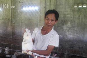 Thanh Hóa: Nuôi thỏ bắt ăn kham khổ, bán đắt như tôm tươi
