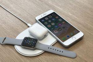Rò rỉ phiên bản Iphone 11