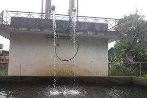 TP Vinh (Nghệ An): Công ty Dệt may Hoàng Thị Loan khai thác nước ngầm không phép