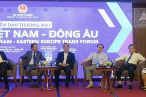 Còn nhiều dư địa xuất khẩu hàng chủ lực của Việt Nam vào Đông Âu