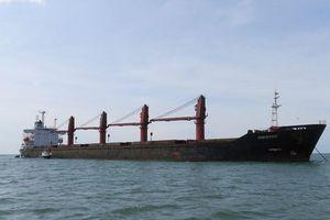 Mỹ tiết lộ bắt giữ tàu hàng Triều Tiên