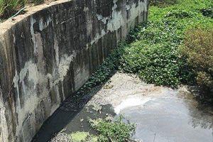 Trạm xử lý nước thải ô nhiễm nghiêm trọng: Đừng để 'cái sảy nảy cái ung'