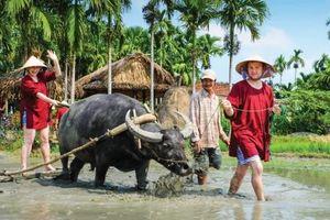 Du lịch Việt Nam: 'Kích hoạt' tầm nhìn mới