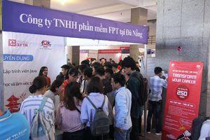 Ngành công nghệ thông tin 'khát' nhân lực, tuyển gần 1.000 sinh viên