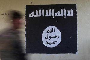 IS tuyên bố thành lập 'tỉnh' Hồi giáo ở Ấn Độ