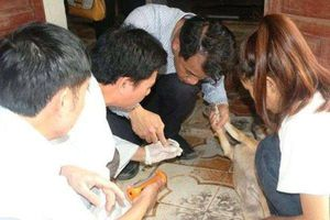 Thu 7 mẫu côn trùng, kí sinh trùng nghi vấn tại nhà nạn nhân tử vong bất thường ở Hà Tĩnh