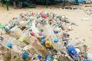 Thừa Thiên - Huế: Không dùng nước uống đóng chai sử dụng một lần trong công sở