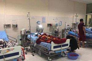 4 người trong gia đình nhập viện vì ăn nhầm lá ngón