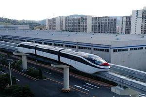Alpha King muốn đầu tư tàu điện 1 ray trên cao ở TP. HCM